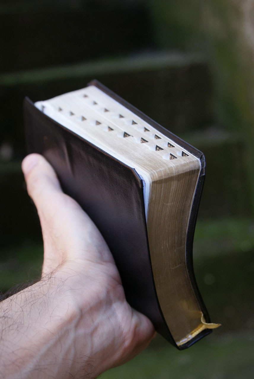 Hand holds a Bible