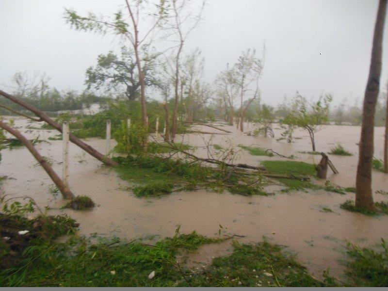 A Flooded Haitian Farm