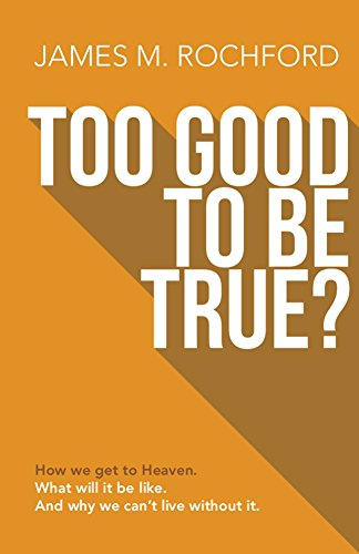"Cover of ""Too Good to Be True"" by James Rochford"